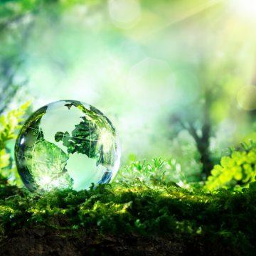 Día del medio ambiente: El positivo seguro ratifica sus compromisos con miras al desarrollo sostenible